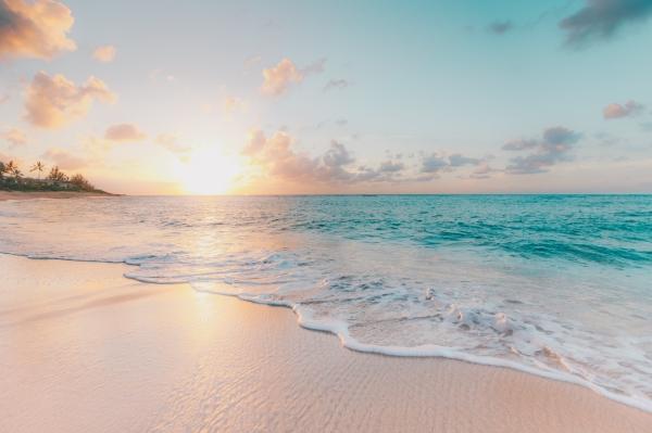conserjes para campings playa (1)